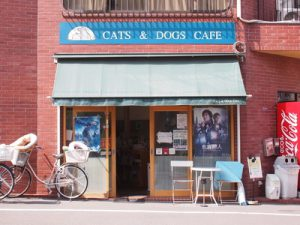 cafe-photo3