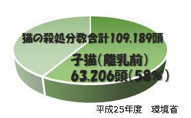 TNR-graph